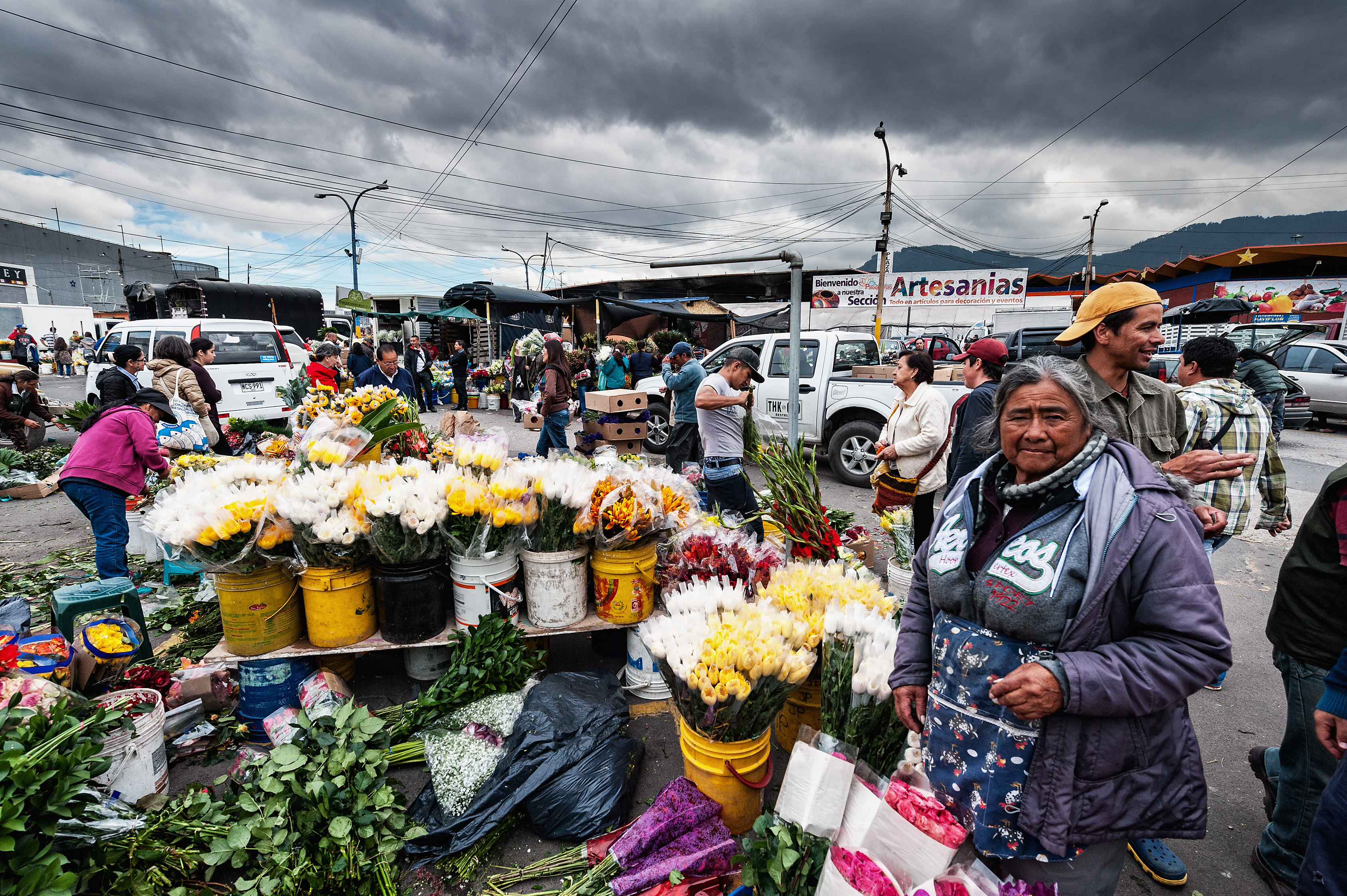 Story: Bogotá breathing again