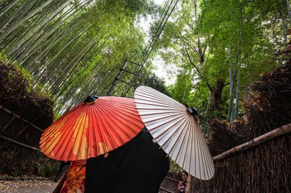 Kyoto_autumn_22