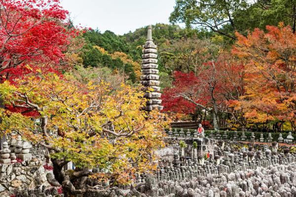 Kyoto_autumn_28