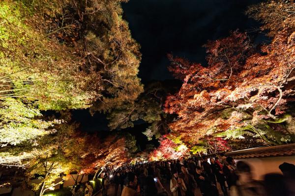 Kyoto_autumn_29