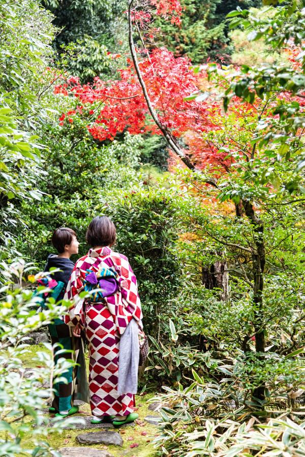 Kyoto_autumn_3