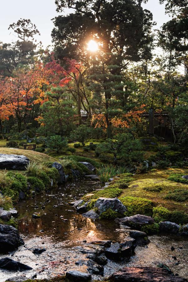 Kyoto_autumn_6
