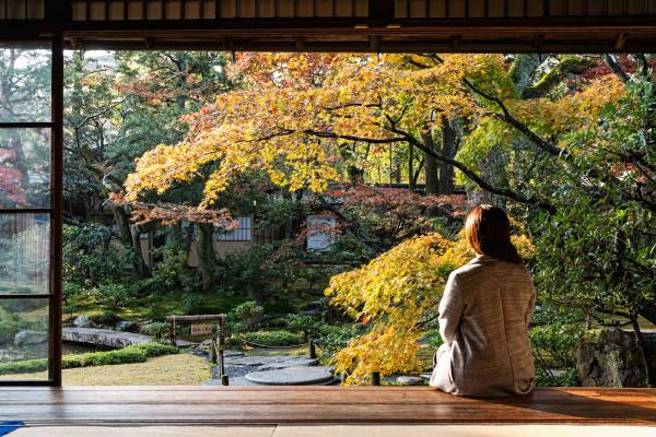 Kyoto_autumn_7