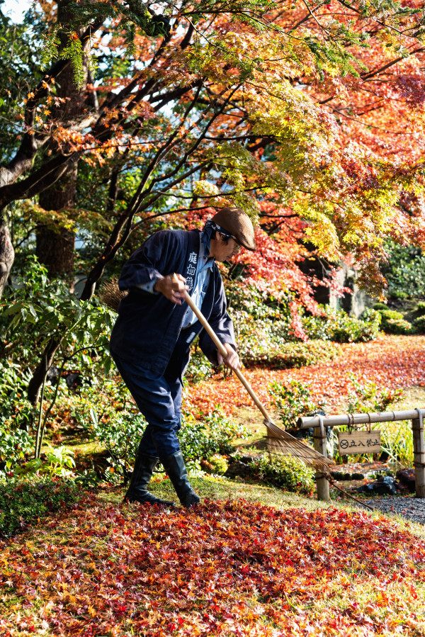 Kyoto_autumn_8