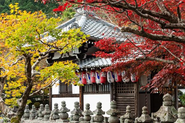 Kyoto_autumn_geisha_10