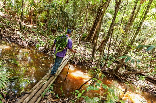 Surinam_41