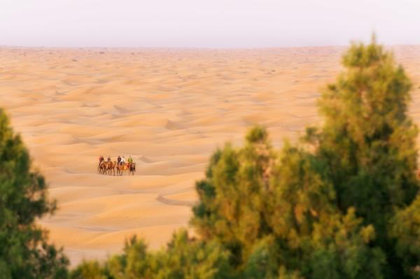 Tunesia_tunesien-23