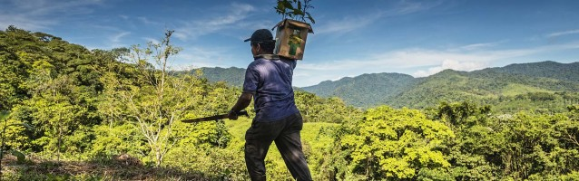Story: Costa Rica - Fifty Shades of Green