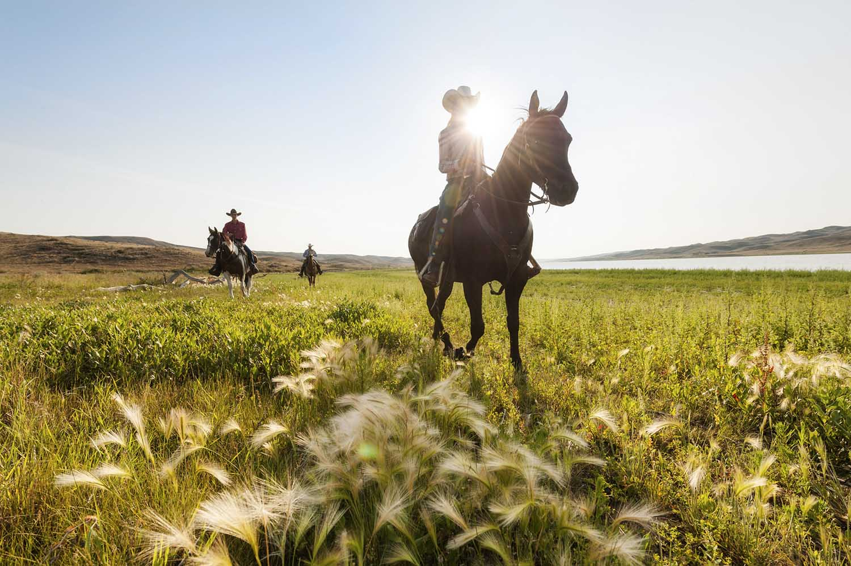 Horseback riding, La Reata Ranch