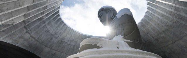 buddha, sapporo, tadaoando